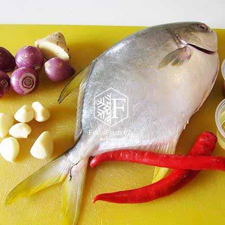 Fish Pomfret Golden (450 g) 金鲳鱼