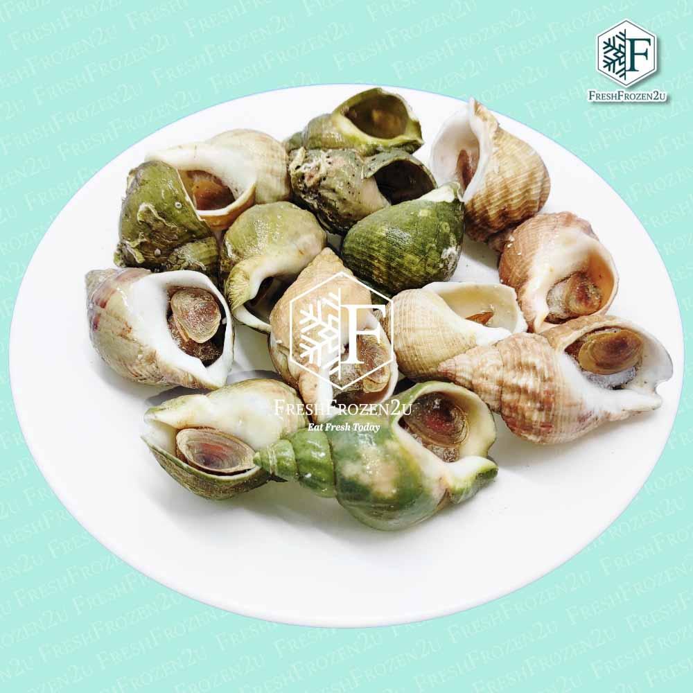 Whelk Green (500 g)