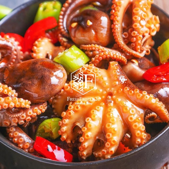 Baby Octopus S (300 g) 小八爪魚