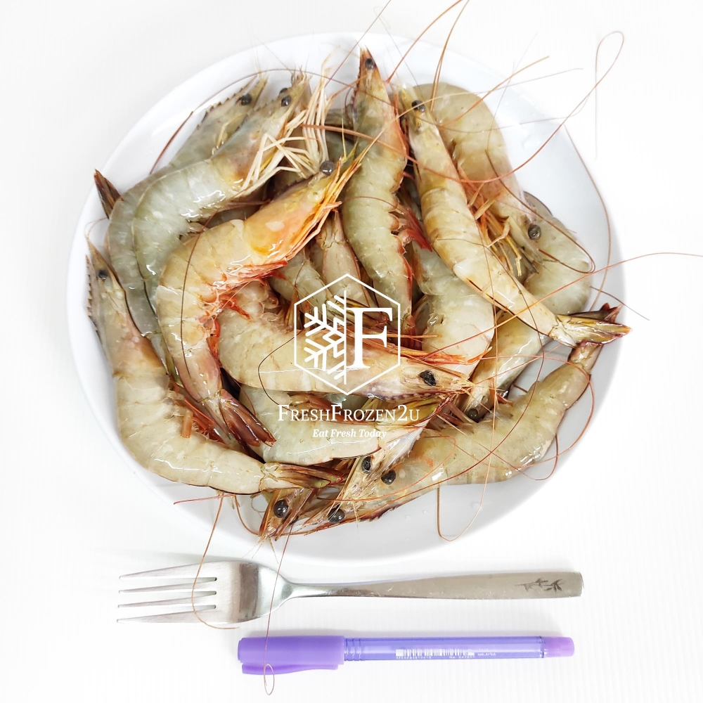 Prawn Sea White XL (21-30 pcs) (700 g) 明虾