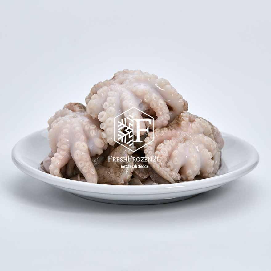 Baby Octopus L (300 g) 小八爪魚
