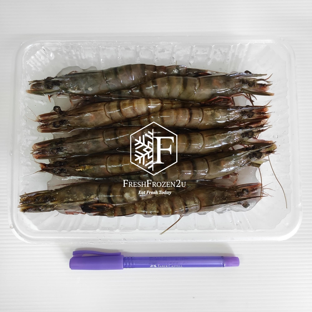 Prawn Tiger (10 pcs) (250 g) 老虎虾