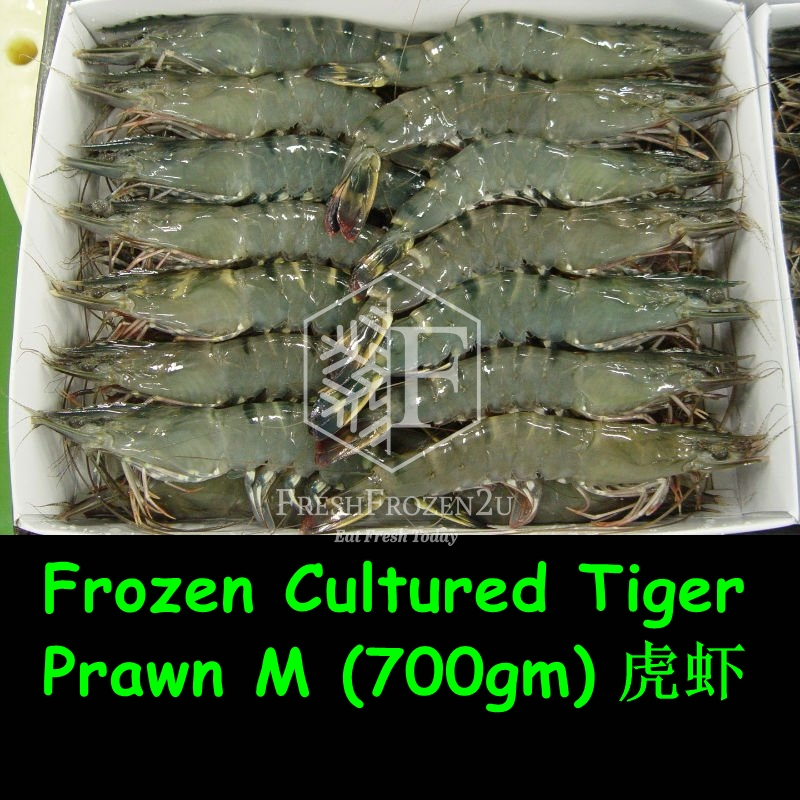 Prawn Tiger (31-35 pcs) (700 g) 虎虾