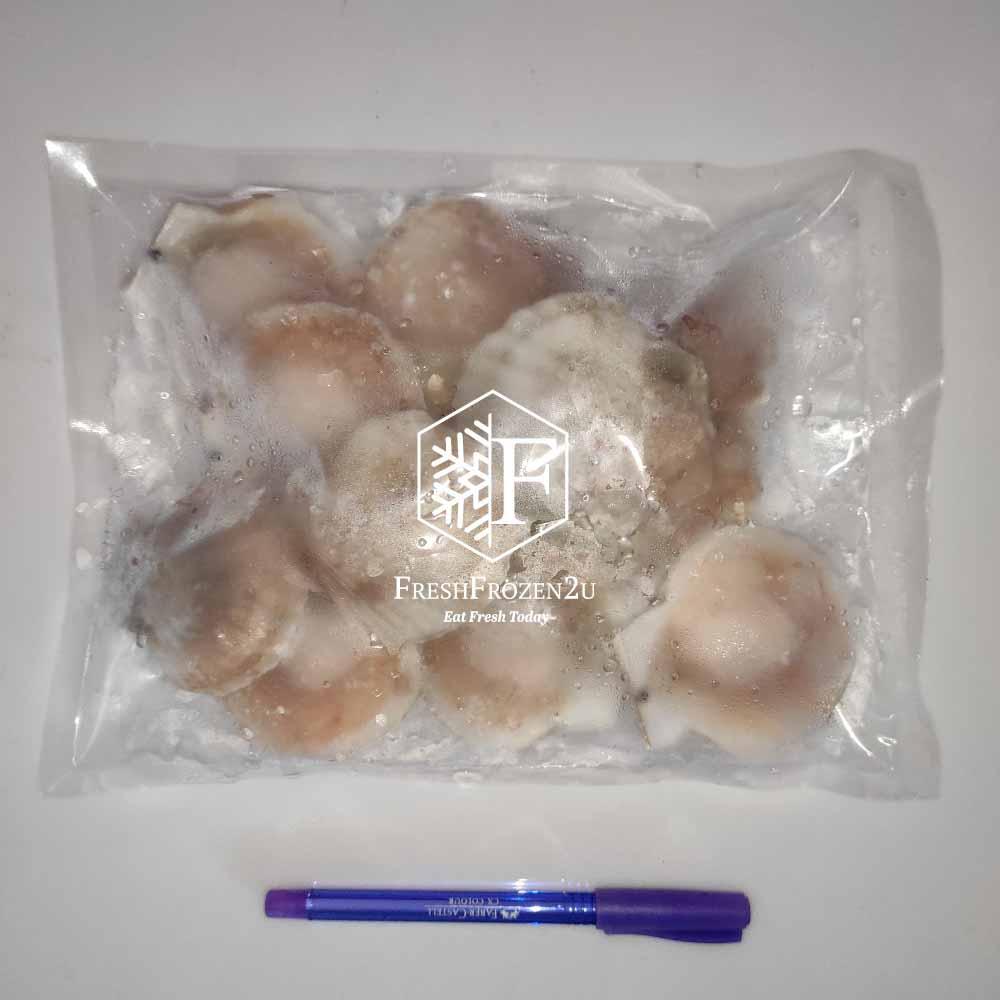 Scallop M (Half Shell) (500 g) 小带子半壳