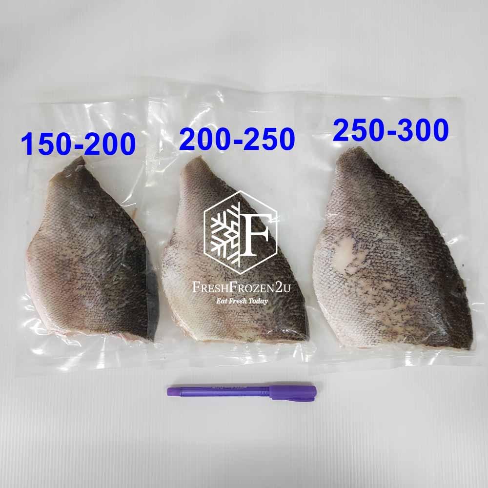 Fish Fillet Jade Perch 宝石鲈鱼片 (250-300 g)