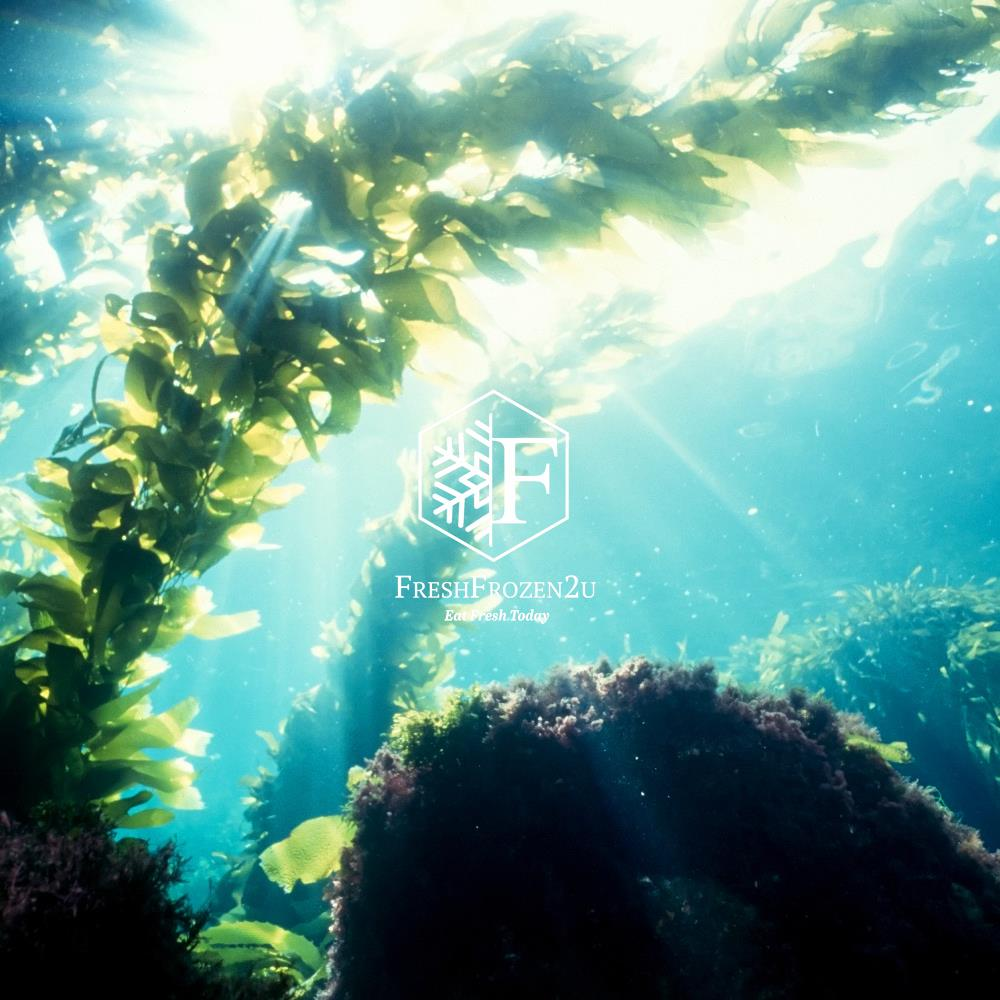 Seaweed Kelp Knot Salted (100 g) 海带结